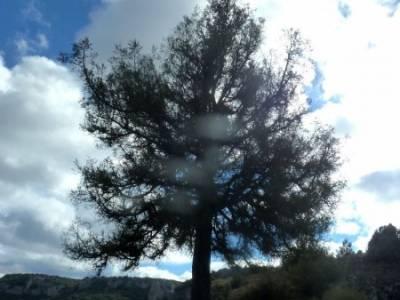 Hoces Río Riaza - Villa Ayllón; senderismo el escorial via libre